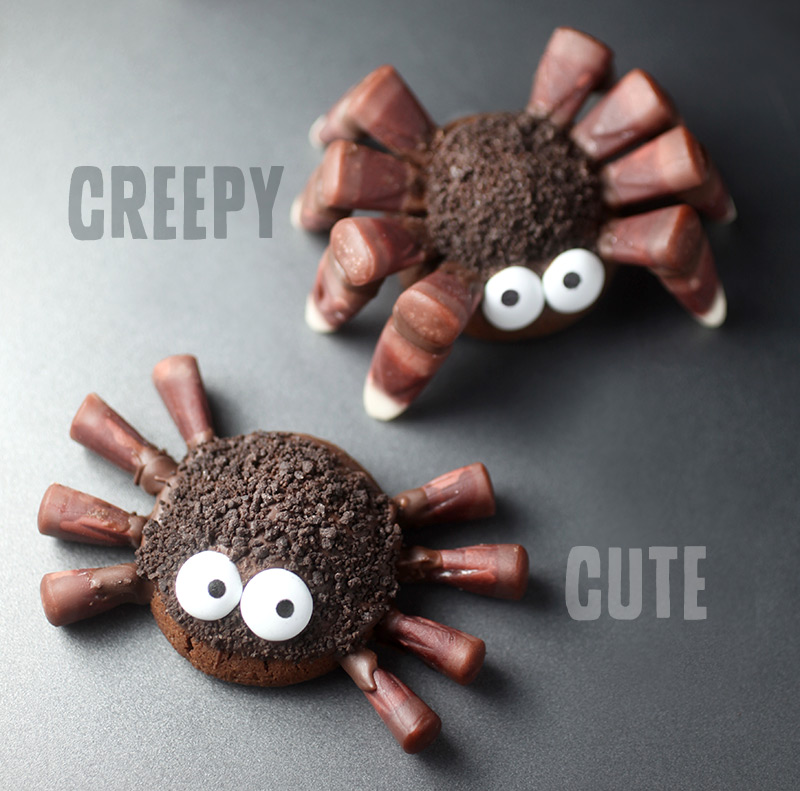 Cute and Creepy Spider Cookies