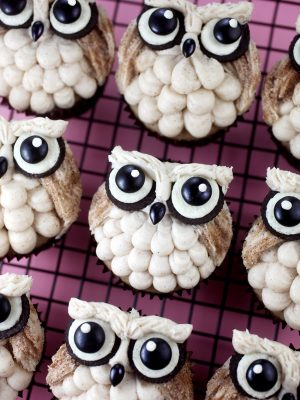 Big Eyed Owl Cupcakes