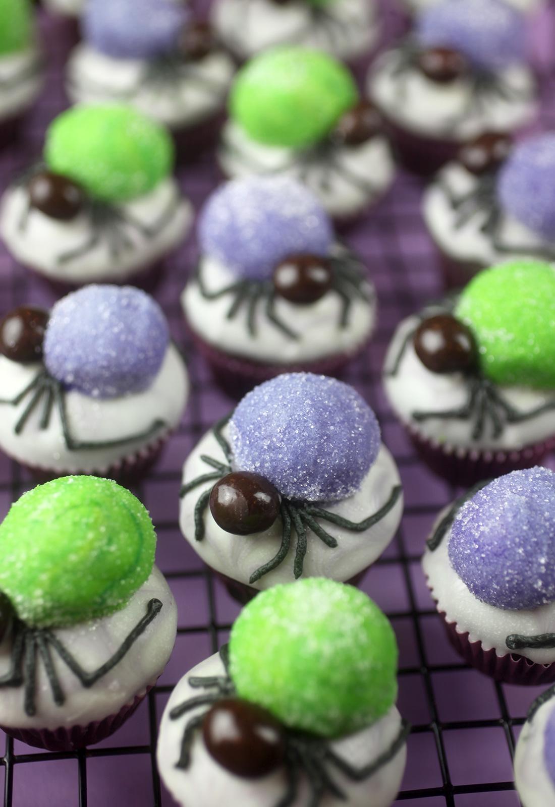 Spider Bites Miniature Cupcakes