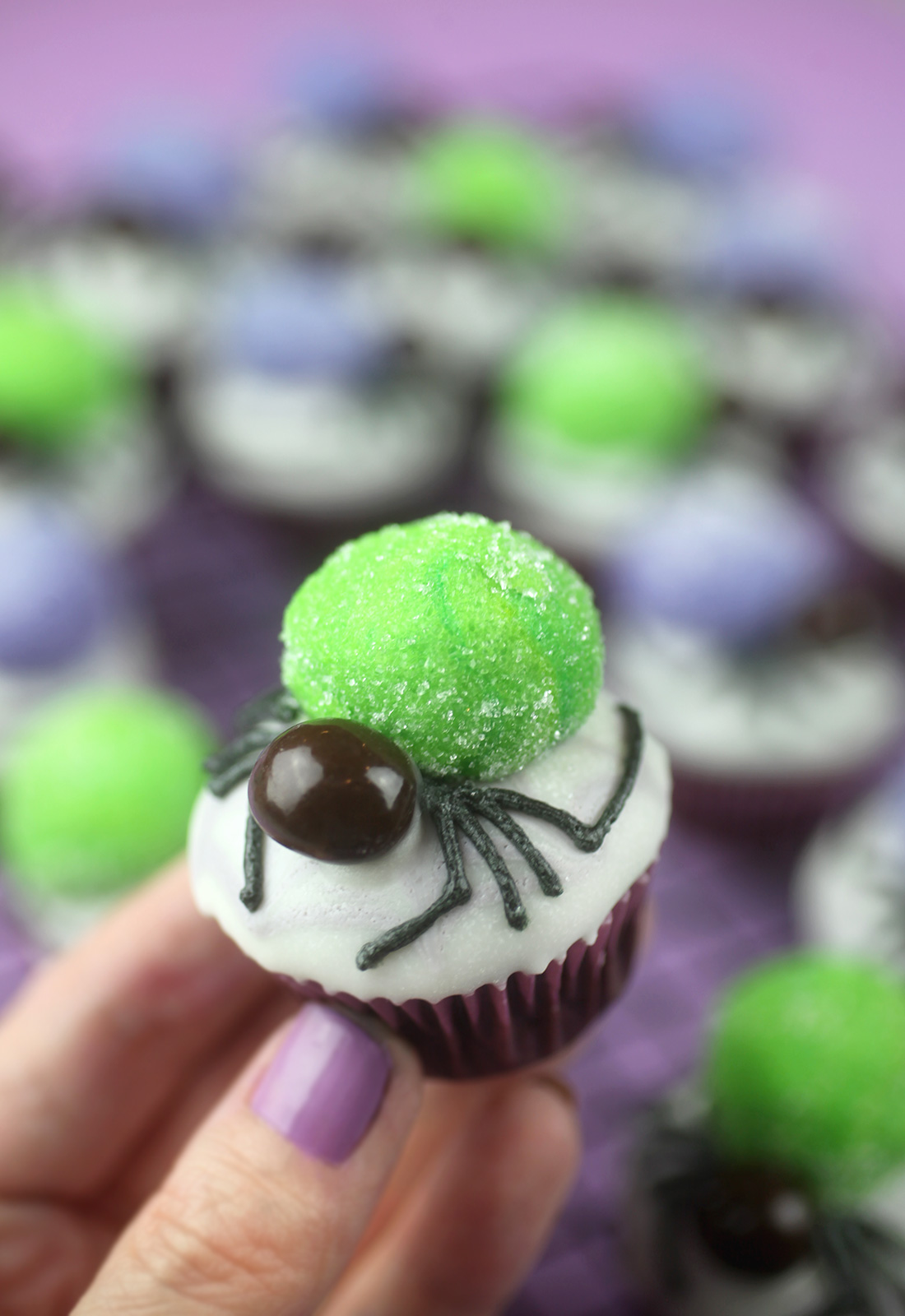 Mini Spider Cupcake